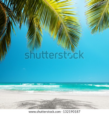 Idyllic tropical beach in sunny day - stock photo