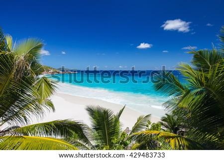 Idyllic tropical white sand beach in Seychelles - stock photo