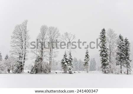 idyllic winter landscape - stock photo