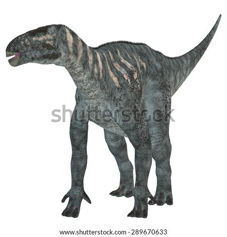 Iguanodon Herbivore Dinosaur - Iguanodon was a herbivorous dinosaur that lived in Europe during the Cretaceous Period. - stock photo
