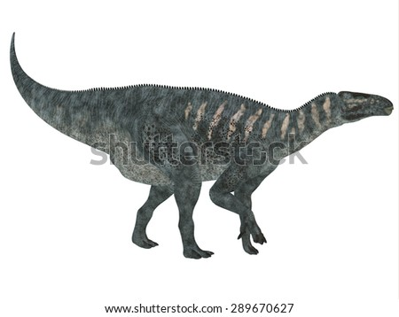 Iguanodon Side Profile - Iguanodon was a herbivorous dinosaur that lived in Europe during the Cretaceous Period. - stock photo