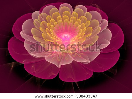 Illustration fractal flower gentle clear water lily - stock photo