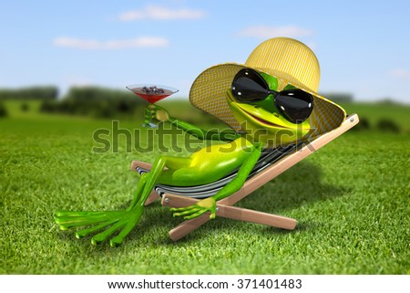 Illustration frog in a deck chair on the grass - stock photo
