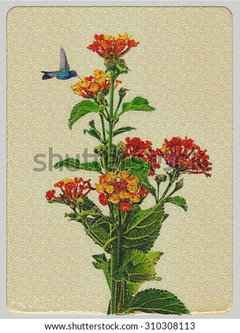 Illustration in Photoshop program.  Picture with flowers and hummingbirds stylized old postcard - stock photo