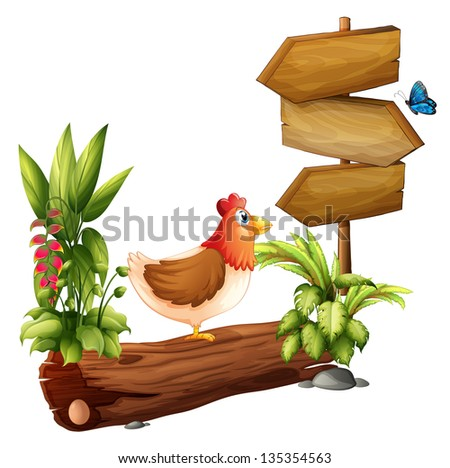 Illustration of a chicken and a butterfly near the wooden arrows on a white background - stock photo