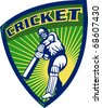 illustration of a cricket sports batsman  batting isolated on white set inside shield - stock photo