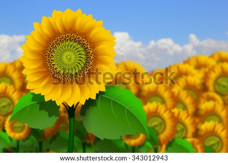 Illustration of a field of yellow sunflowers - stock photo