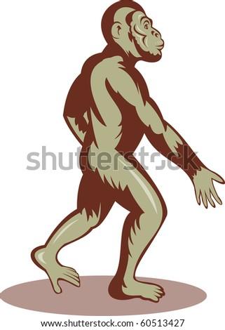 illustration of a Prehistoric man or ape walking upright - stock photo