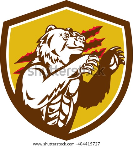 Illustration of a smirking California grizzly North American brown bear his paw raised viewed from the side with claw marks in the background done in retro style set inside crest shield.  - stock photo