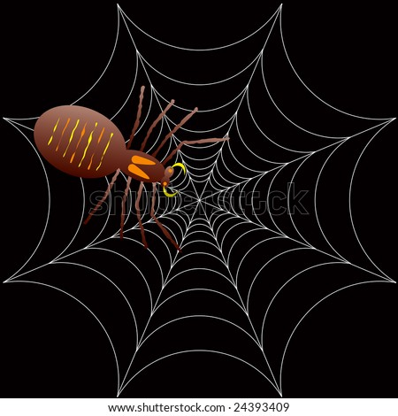 illustration of a spooky spider for halloween or as a background - stock photo