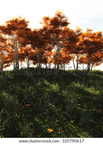 Illustration of alder trees in Autumn (fall) colours on a hill in full sunshine, 3d digitally rendered illustration - stock photo