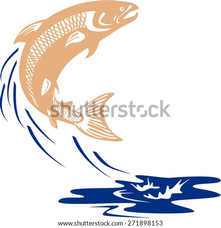 Illustration of an Atlantic salmon fish jumping in water set on isolated white background viewed from the side done in retro style.  - stock photo