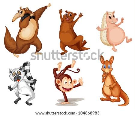 Illustration of animals on white - - stock photo