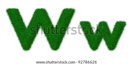 Illustration of capital and lowercase letter W made of grass - stock photo