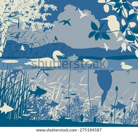Illustration of diverse wildlife in a freshwater ecosystem - stock photo
