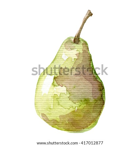 Illustration of fruit pear Hand drawn watercolor painting  - stock photo