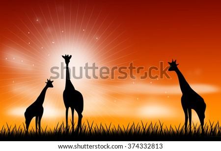 Illustration of giraffee on grass with sunset skyline - stock photo