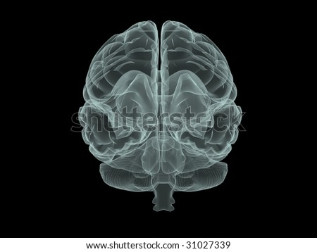 illustration of human brain in x-ray style - stock photo