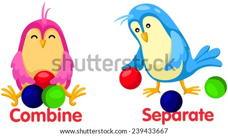 illustration of isolated cute birds with opposite words - stock photo