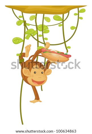 Illustration of monkey with a hotdog - EPS VECTOR format also available in my portfolio. - stock photo