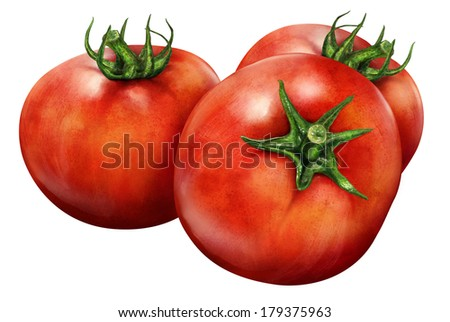 Illustration of red tomatoes isolated on white background  - stock photo