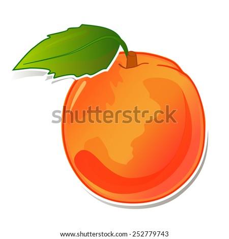 Illustration of ripe tasty peach - stock photo