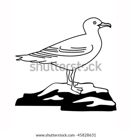 illustration of the sea gull on white background - stock photo