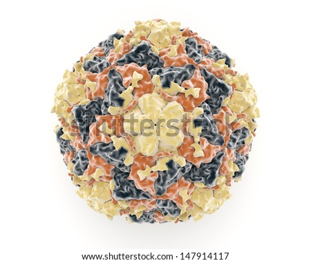 Illustration showing the structure of the rhinovirus which is a member of the picornaviruses which causes diseases of the respiratory tract like the common seasonal cold - stock photo