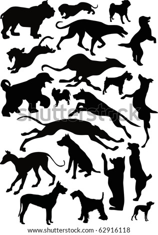 illustration with dog silhouettes isolated on white background - stock photo