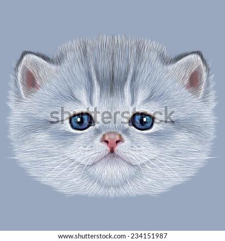 Illustrative Portrait of Domestic Kitten. Cute silver kitten with blue eyes. - stock photo