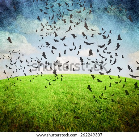 image from old paper and clouds texture series with birds and sky and grass background - stock photo