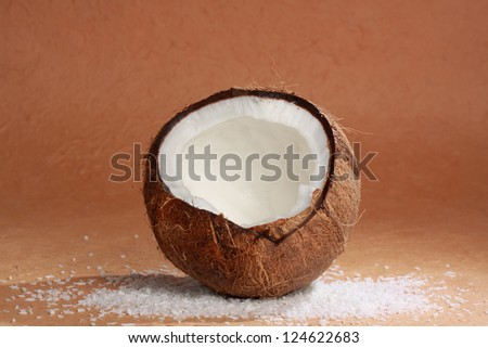 image of a simple raw natural coconut - stock photo