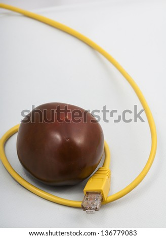 Image of a tomato with ethernet cable - stock photo