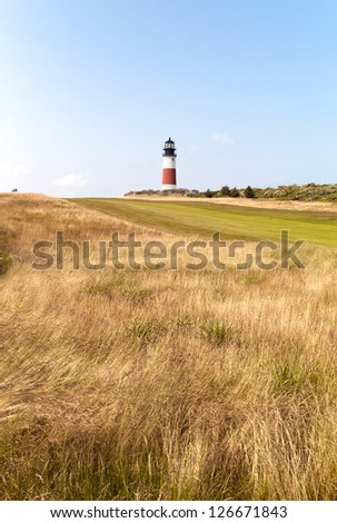 Image of a vineyard with lighthouse in the background. - stock photo