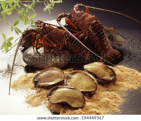 Image of Abalone and prawn - stock photo