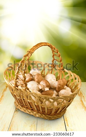 image of baskets with mushrooms on a green background - stock photo