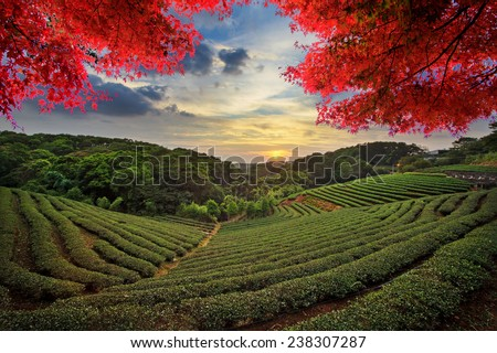 Image of beatiful landscape, Taiwan for adv or others purpose use - stock photo