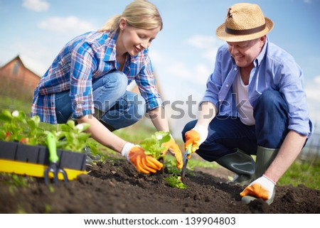 Image of couple of farmers seedling sprouts in the garden - stock photo
