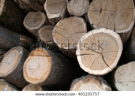image of dry firewood laid in a heap - stock photo