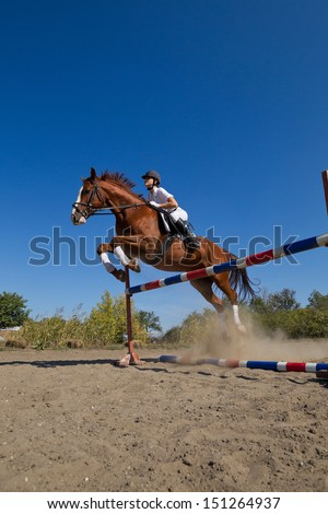 Image of  female jockey with purebred horse, jumping a hurdle. - stock photo
