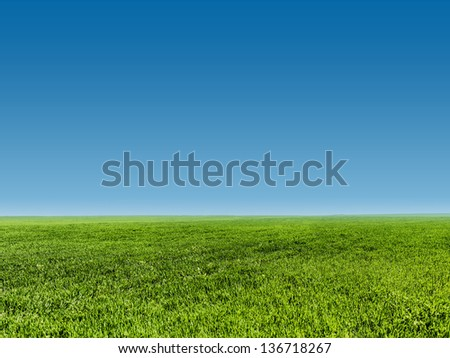 image of green grass field  and clear blue sky - stock photo