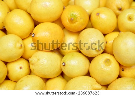image of many lemons in pile together as a team work concept or fresh food - stock photo