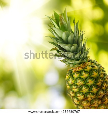 Image of pineapple  closeup - stock photo