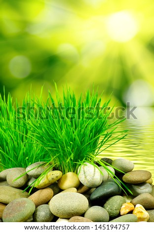 Image of rocks and grass on a water background - stock photo