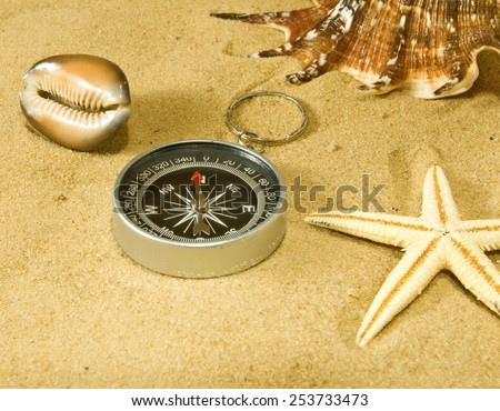image of sea shells and compass in the sand closeup - stock photo