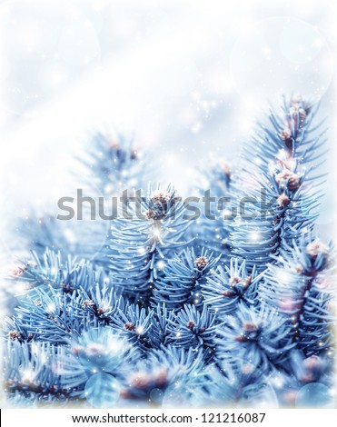 Image of snowy fir tree background, abstract natural backdrop, pine tree branch covered hoar, coniferous twig border, beautiful winter season, New Year greeting card, Christmas holidays - stock photo