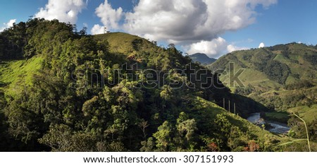 Image of the rainforest in the peruvian amazon. - stock photo