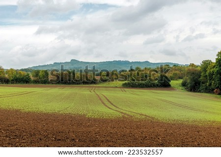 Image showing farmland during the bleak october months - stock photo