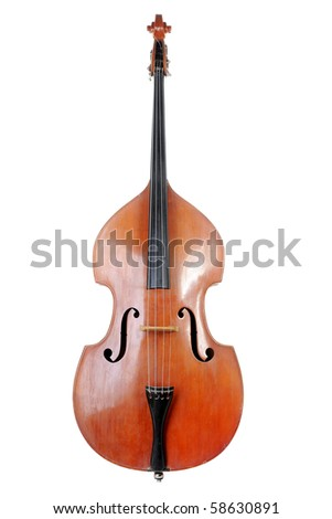 Images of the classical contrabass. Isolated on white background - stock photo