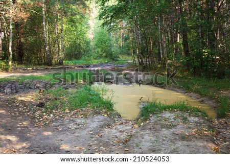 Impassable forest road of mud and clay, offroad  - stock photo